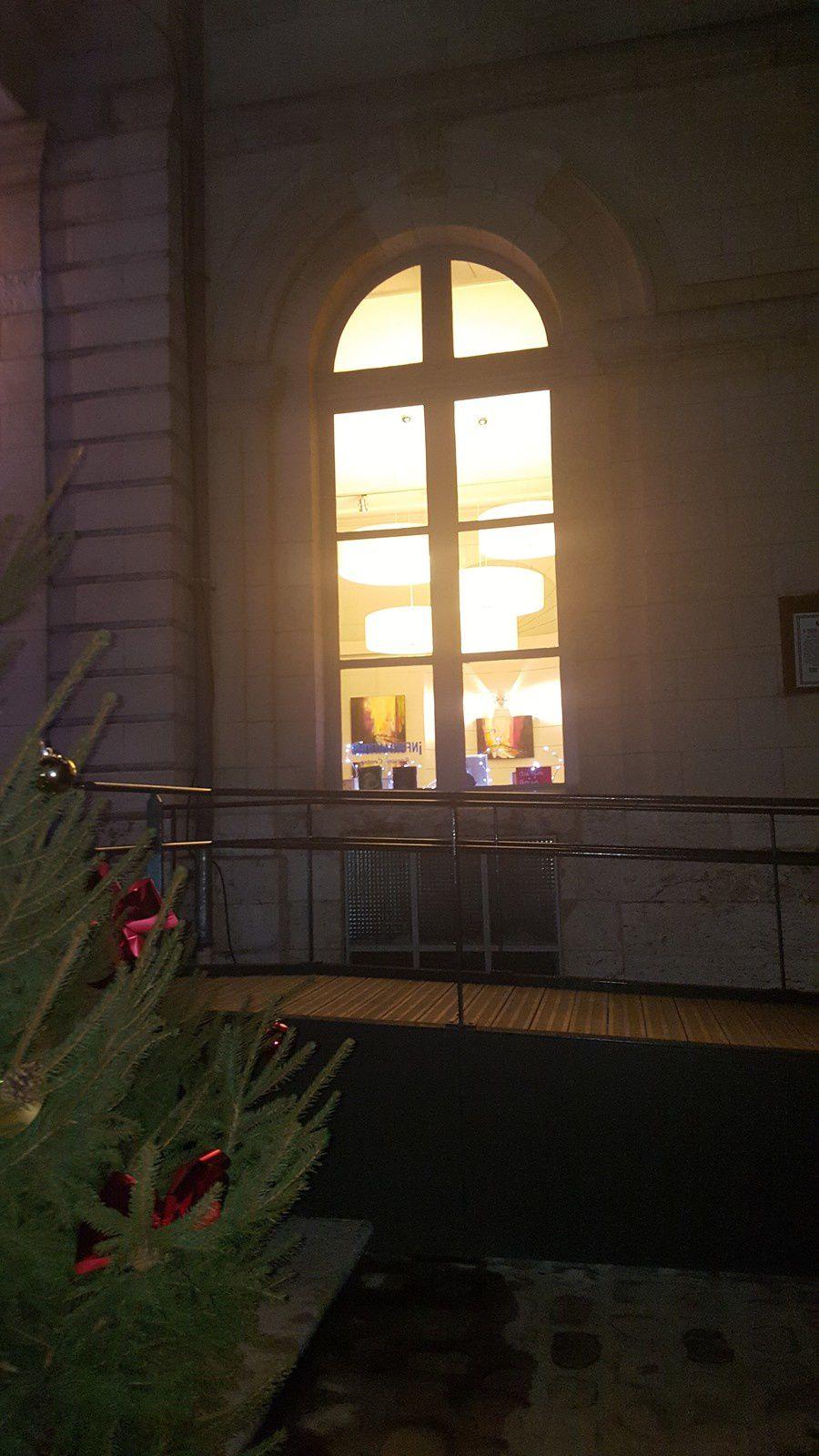 Exposition &quot&#x3B;Suis-moi&quot&#x3B;  jusqu'au 19 janvier à l'Hôtel de ville de Blois