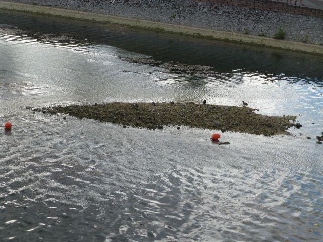 Ca sent la sècheresse, le niveau de l'eau est bas