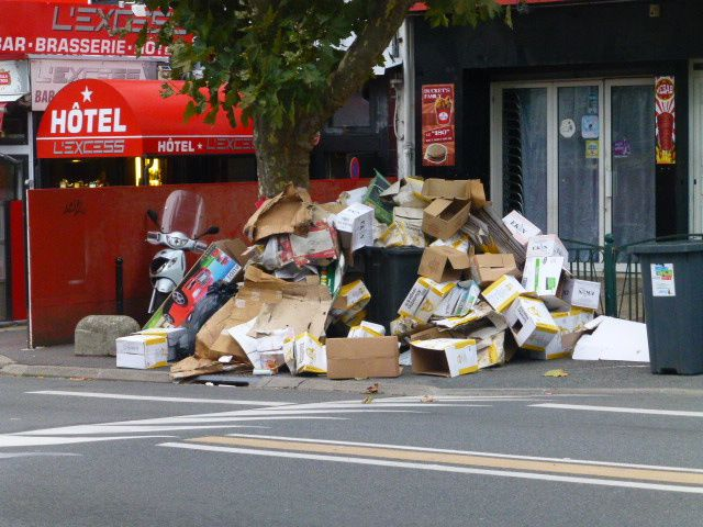 La poubelle déborde avenue Henri-Brisson, c'est peu dire