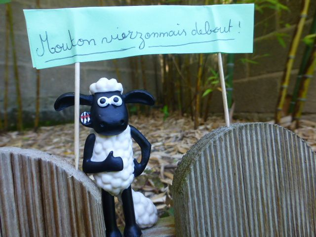 Première manif à Vierzon de Mouton debout