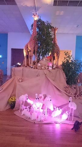 Au salon vierzonnais des illuminations de Noël !