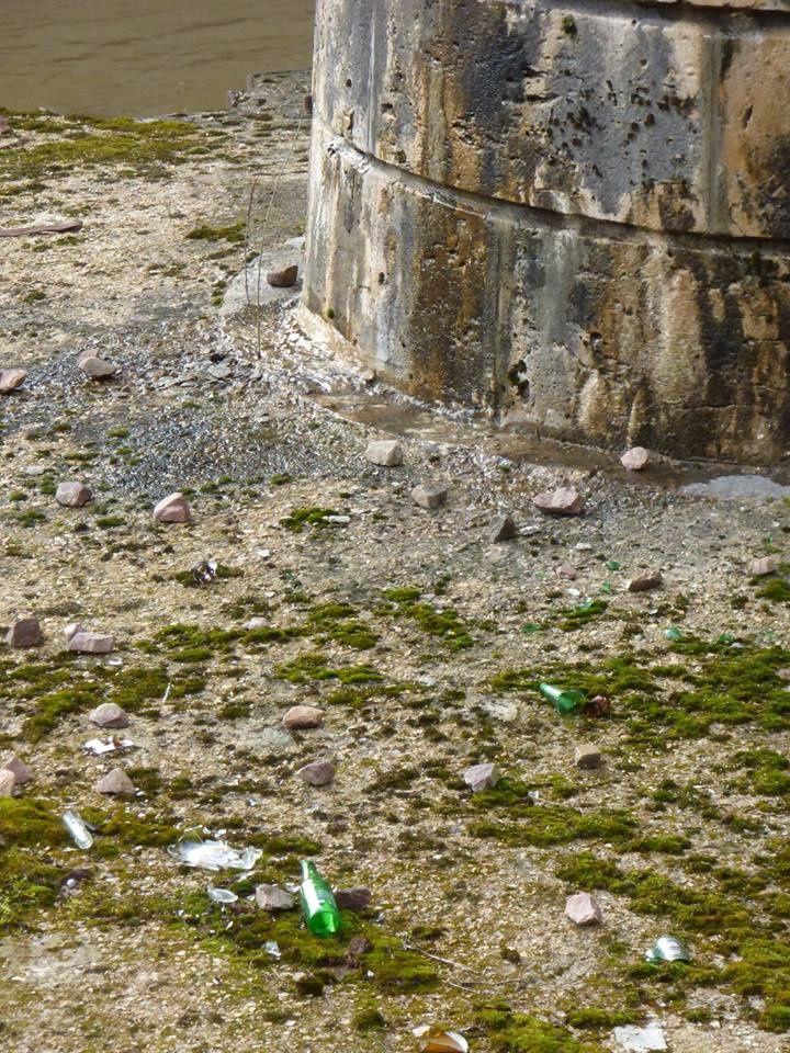 Le triste constat de l'Union des pêcheurs vierzonnais le long des berges du Cher