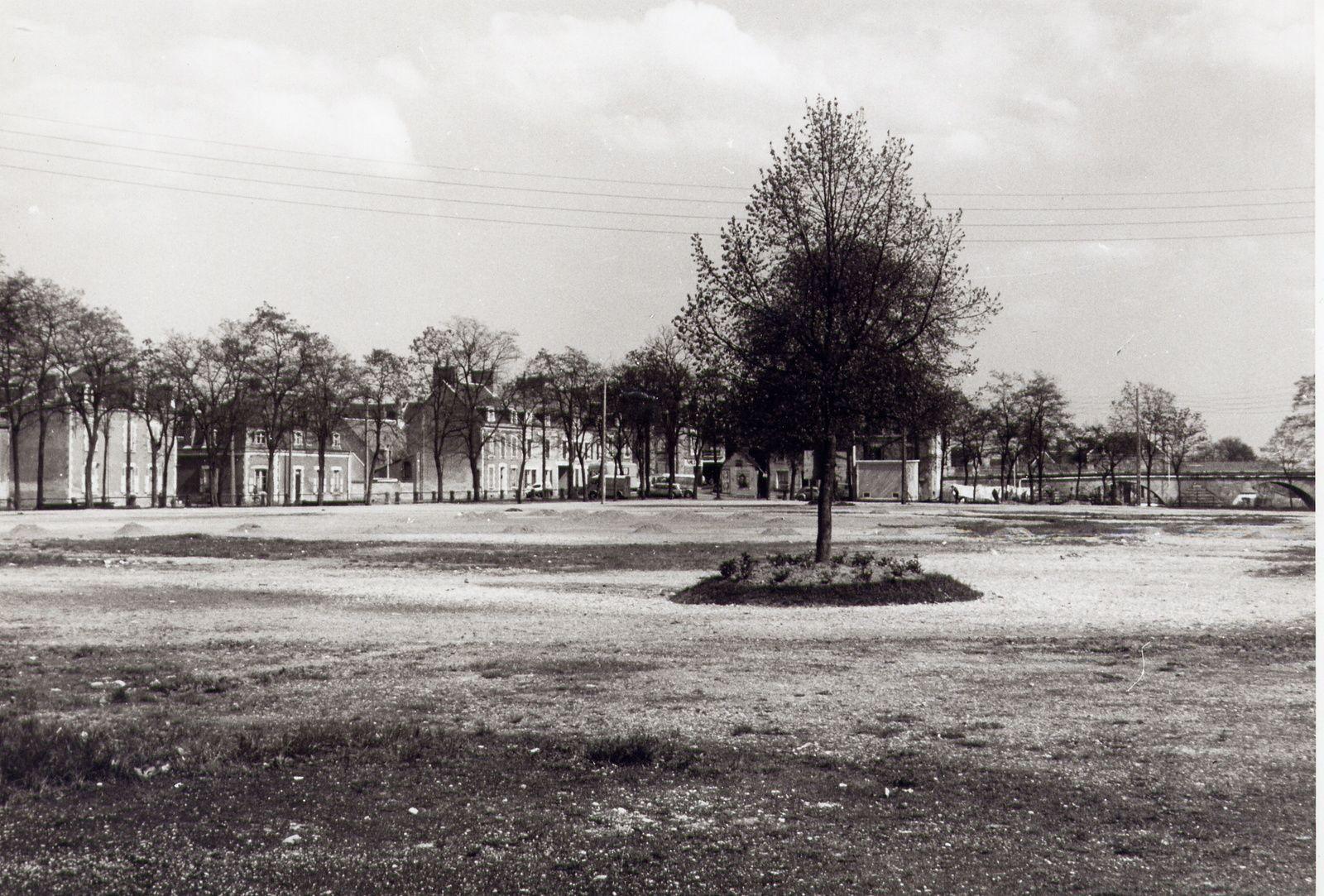 C'était l'arbre de la libération
