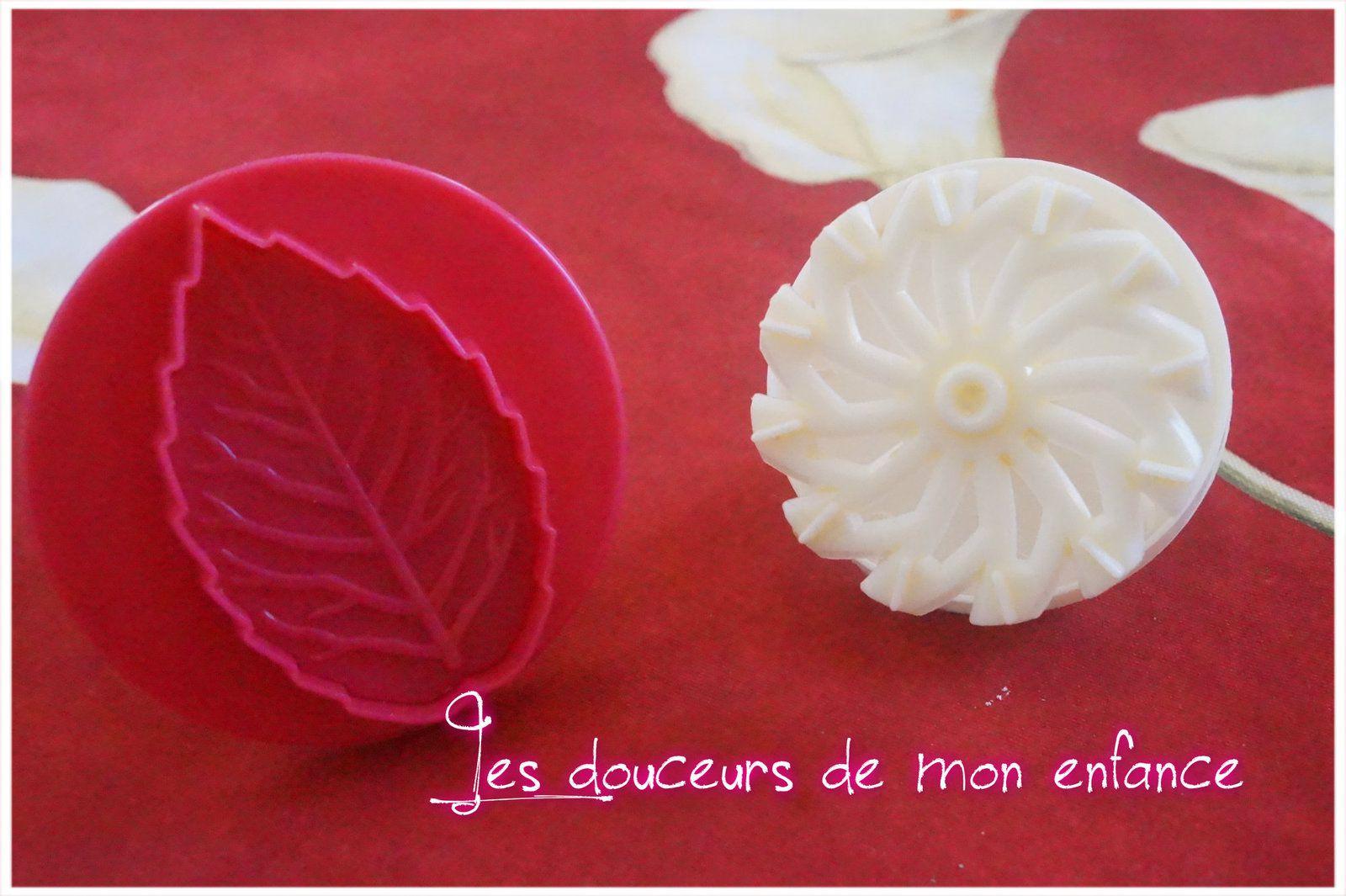 Découpoir à piston  feuille et fleur rosas