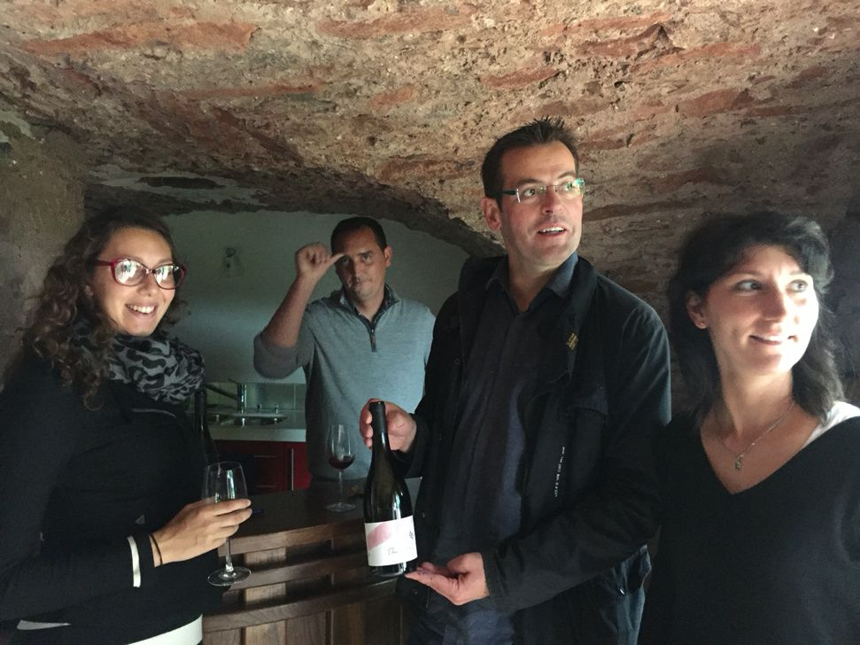 viticulture  anne