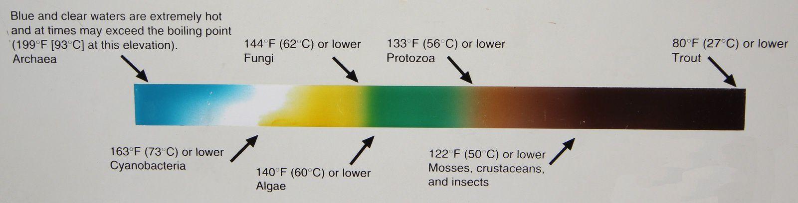 Correspondances couleurs-températures de l'eau