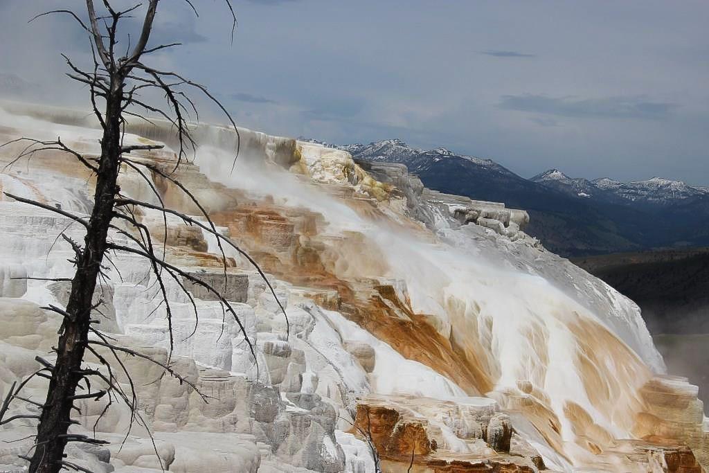 Yellowstone &amp&#x3B; Grand Teton