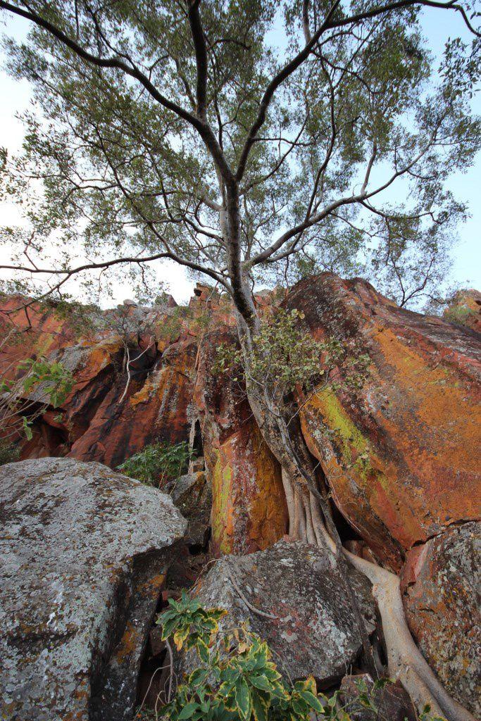 Superbes formations rocheuses du plateau du Waterberg