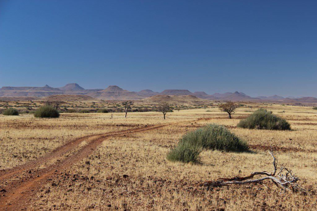 Les paysages époustouflants de la concession de Palmwag