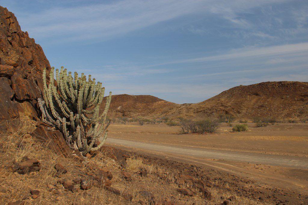Paysage désertique autour du Doro !Nawas