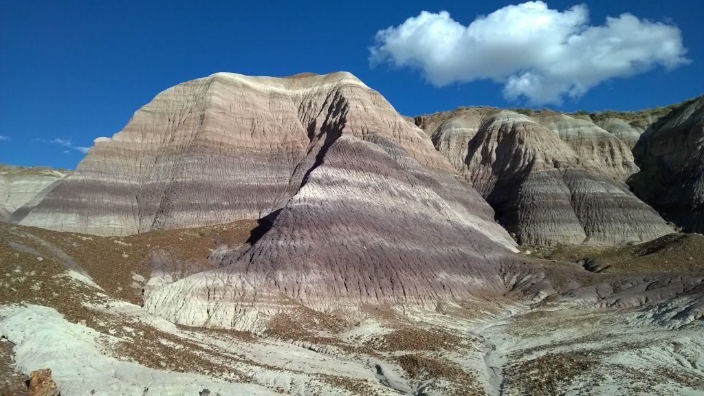 Les strates de marnes colorées de Blue Mesa (AM ou PM)