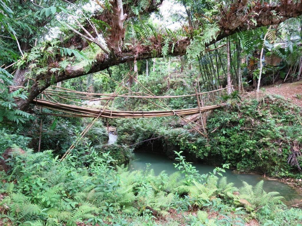 Le pont en bambous façon Indiana Jones &#x3B;-)