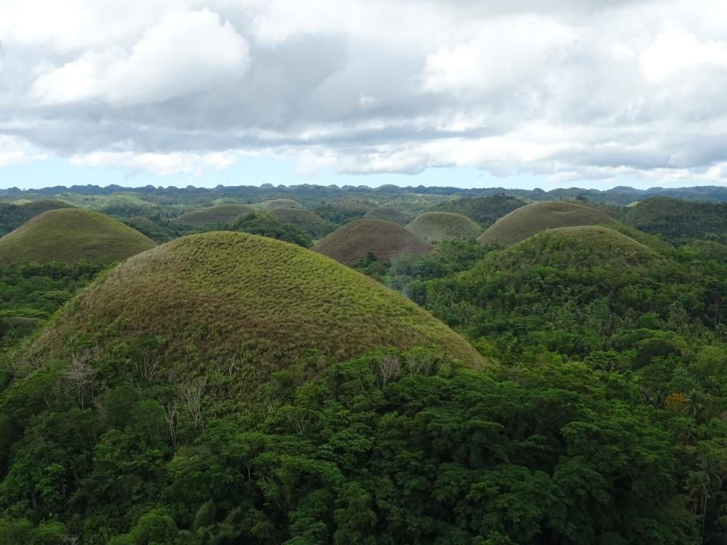 Les fameuses Chocolate Hills