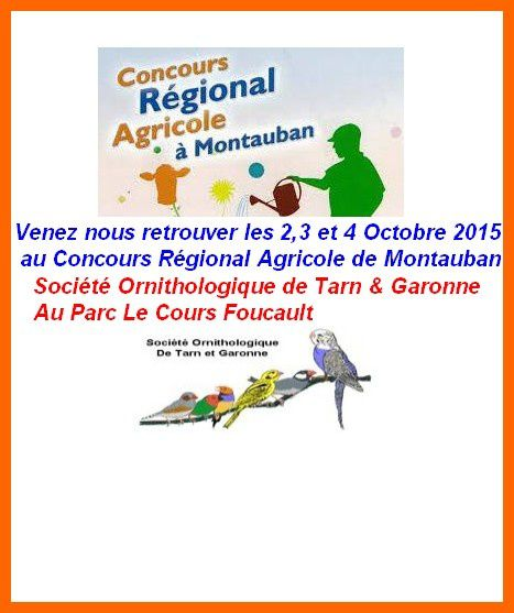 Concours Agricole 2015