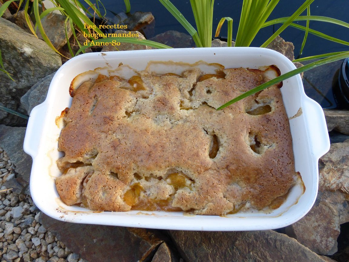 CLAFOUTIS VEGAN AUX FRUITS D'ETE
