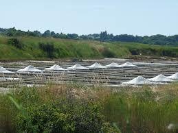 les marais salants et les paludiers