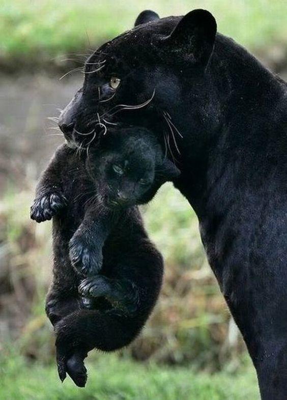 Les mères ont affaires avec l'invisible...