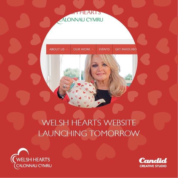 Bonnie Tyler - Welsh Hearts Website - Charity - 2014