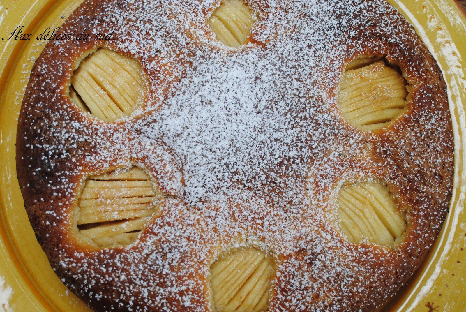 Moelleux aux pommes et pépites de chocolat .