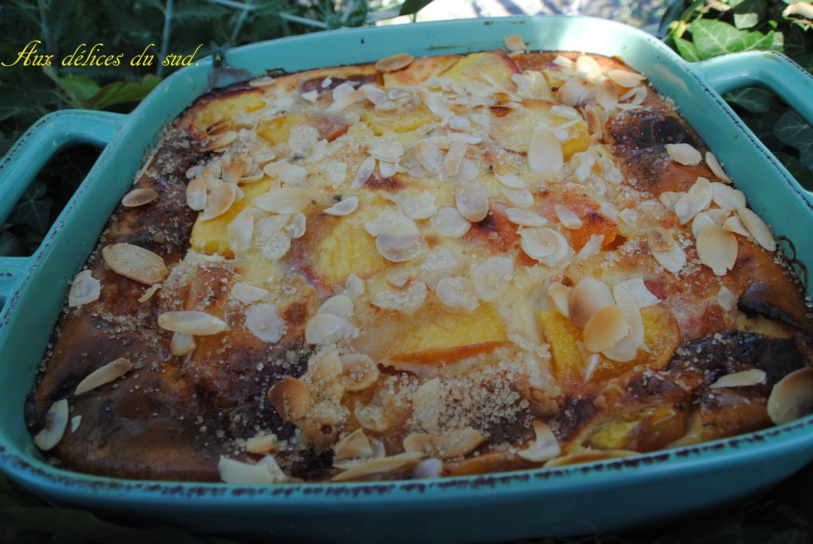 Clafoutis aux nectarines ,  abricots :