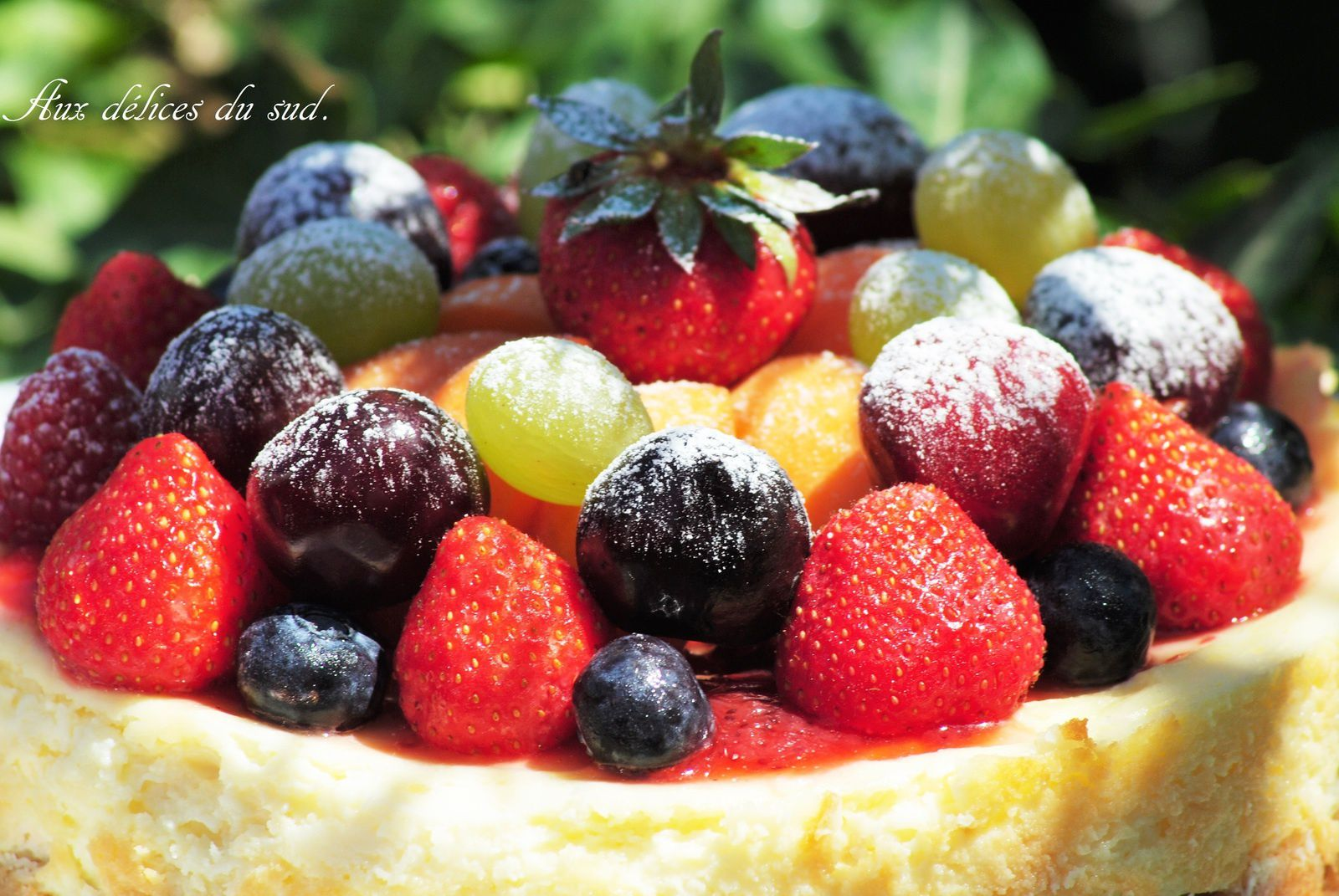 Cheesecake aux fruits de saison :