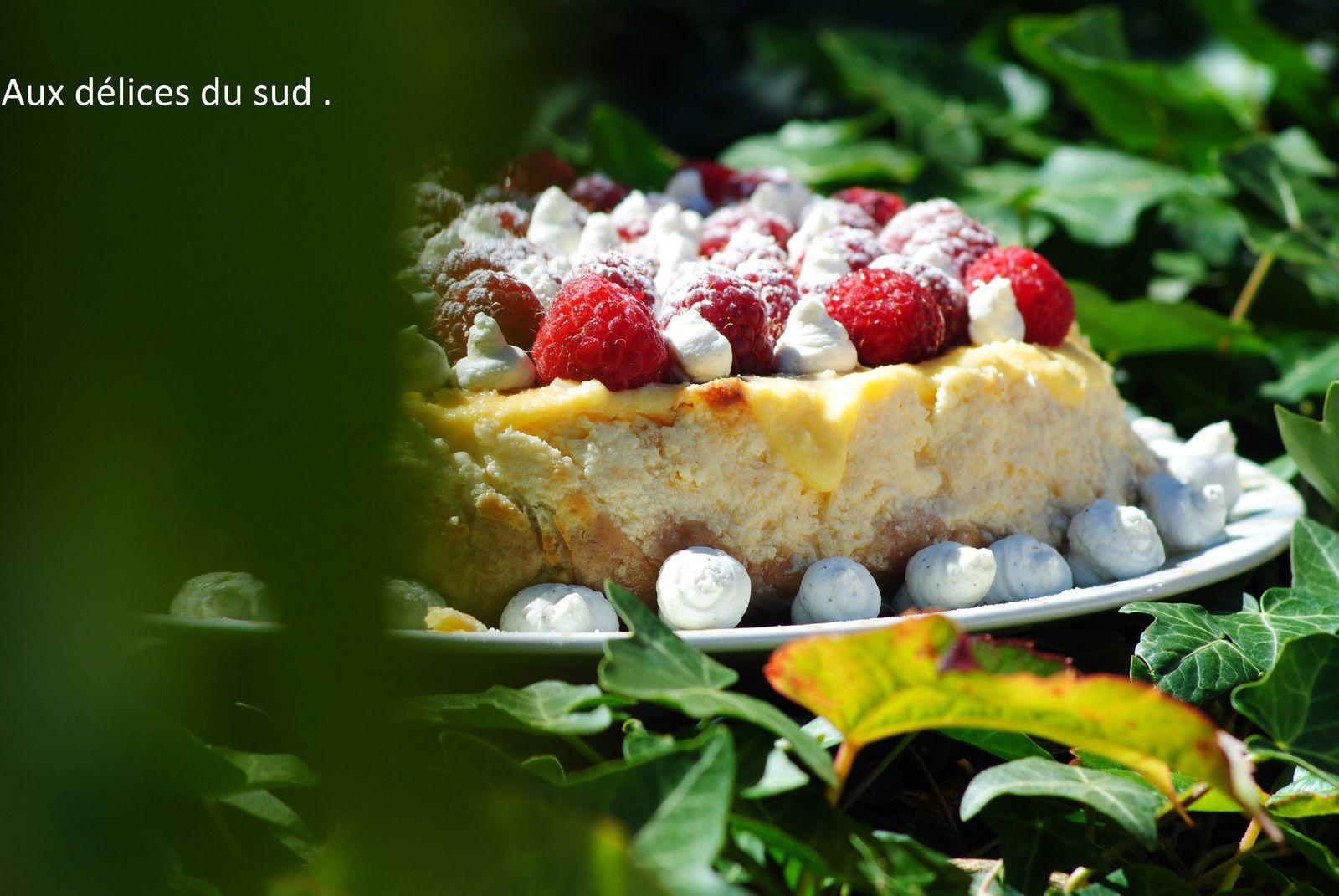 Cheese-cake au citron ,framboises .