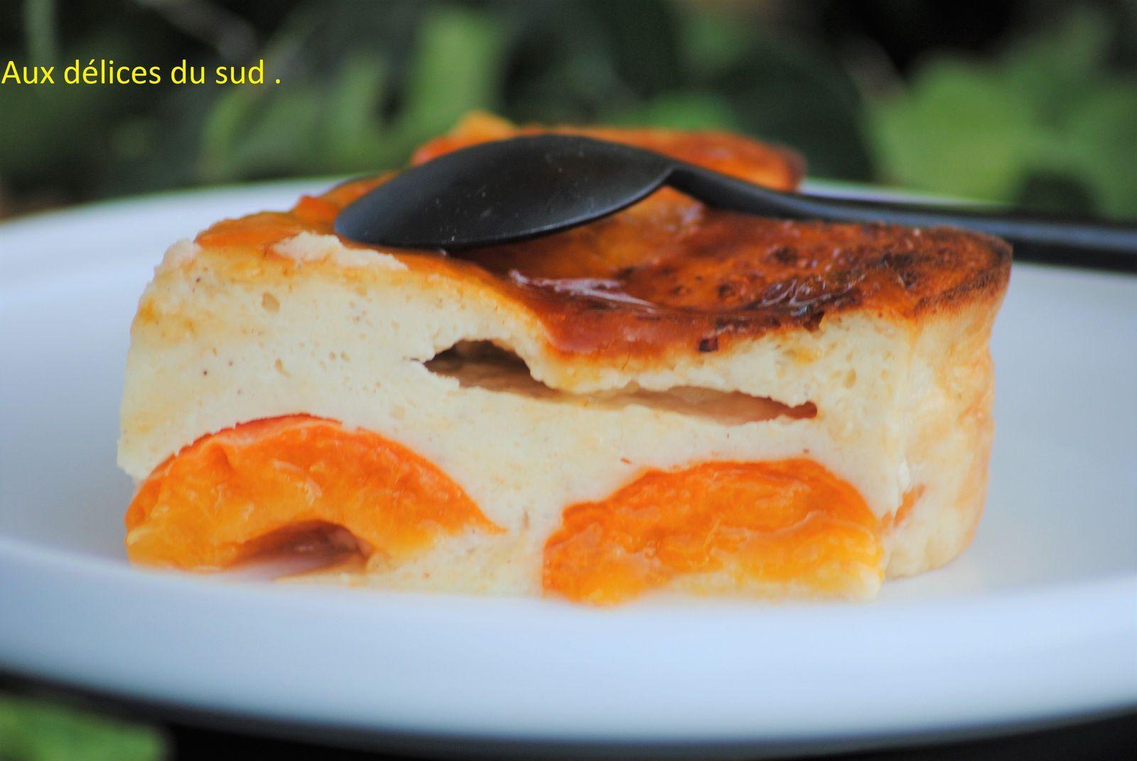 Cuajada aux abricots light ( flan espagnol ) .