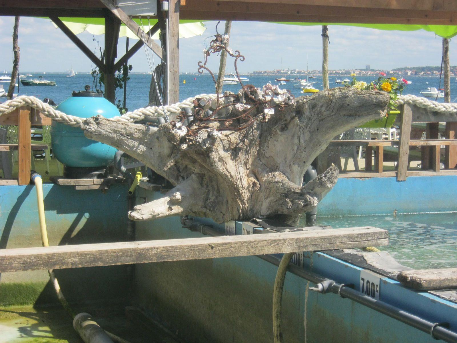 Des vélos, des huîtres, du bois et hop de belles sculptures