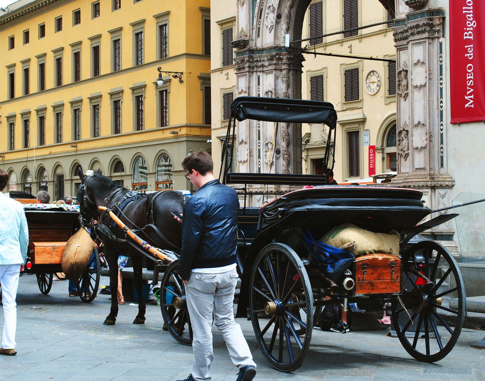 Bienvenue à Florence, Italie
