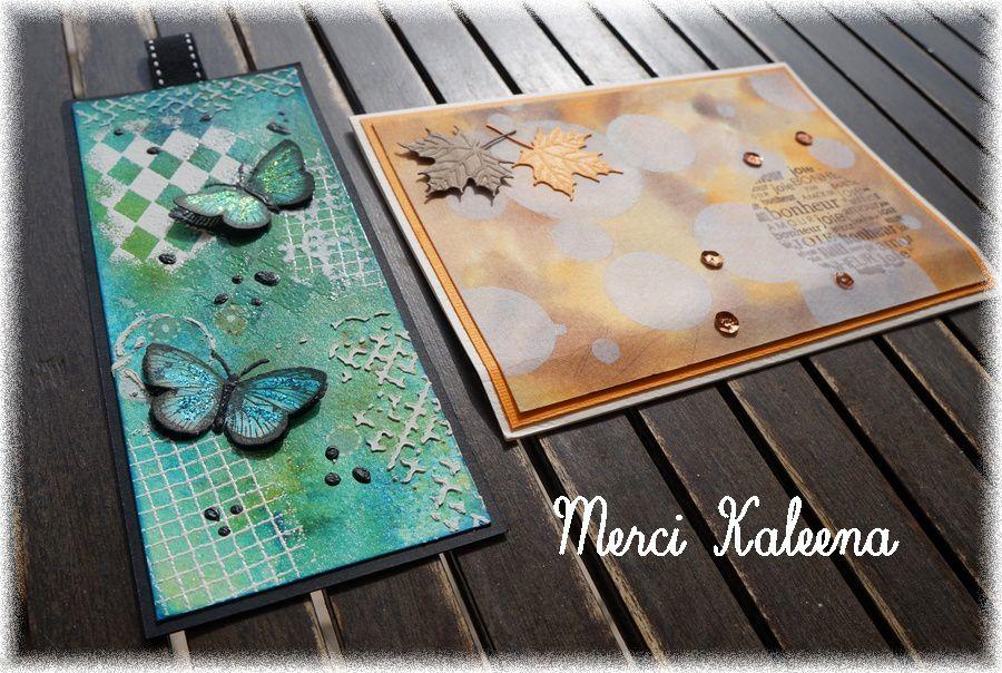 Pocket letter, tag, cartes et swap