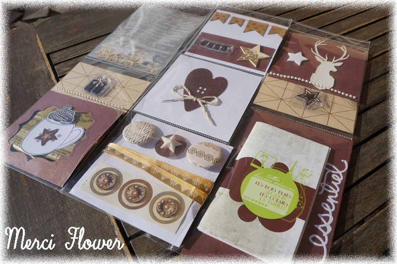 [ Pocket Letter ] reçue de Flower
