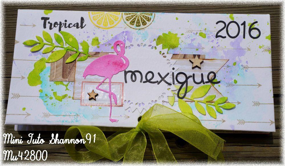[ Mini album ] Mexique 2016 .....