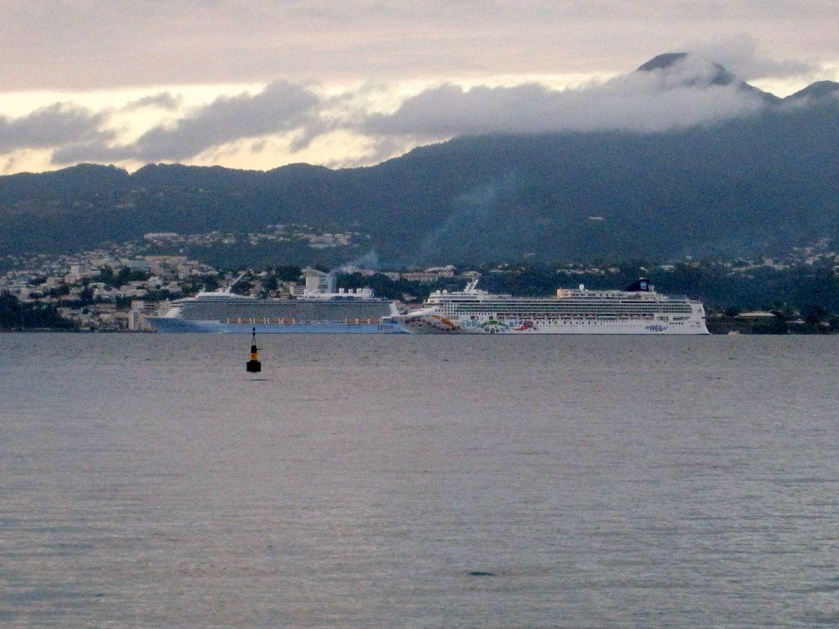 """Le """"Norwegian Pearl"""" à Fort-de-France"""