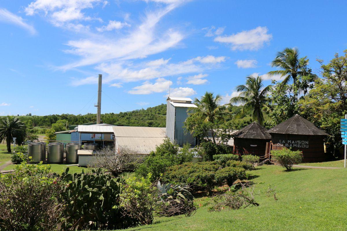 La distillerie Trois Rivières, Martinique