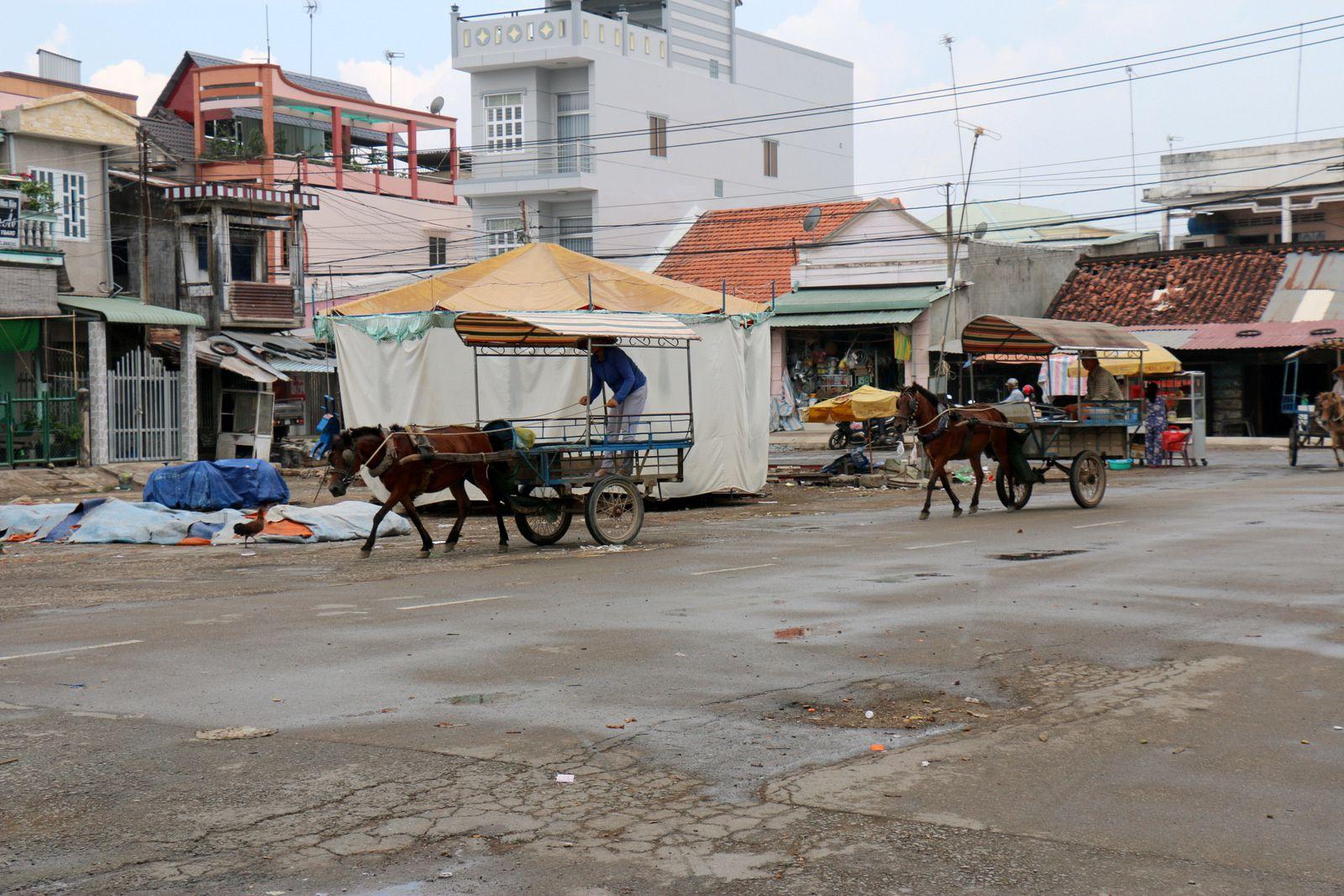Balade en calèche à Tan Thach, Vietnam