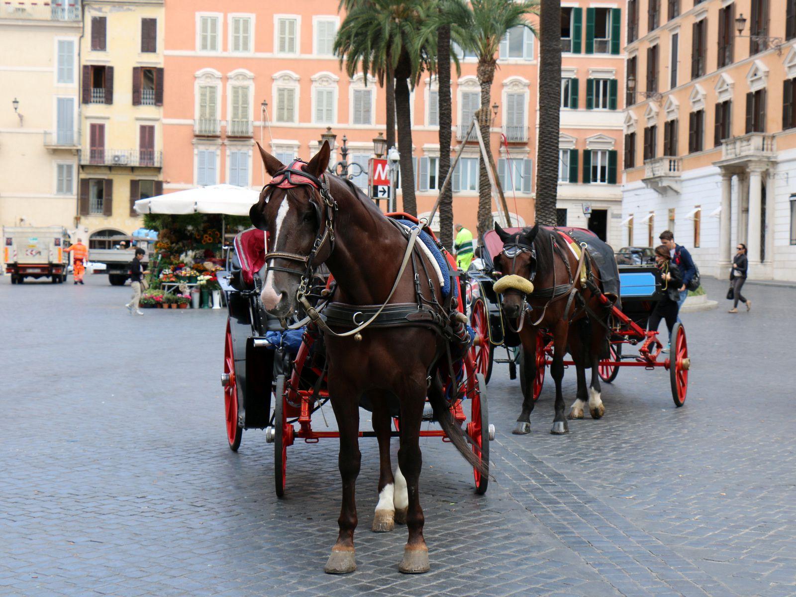 Piazza di Spagna (place d'Espagne ), Rome