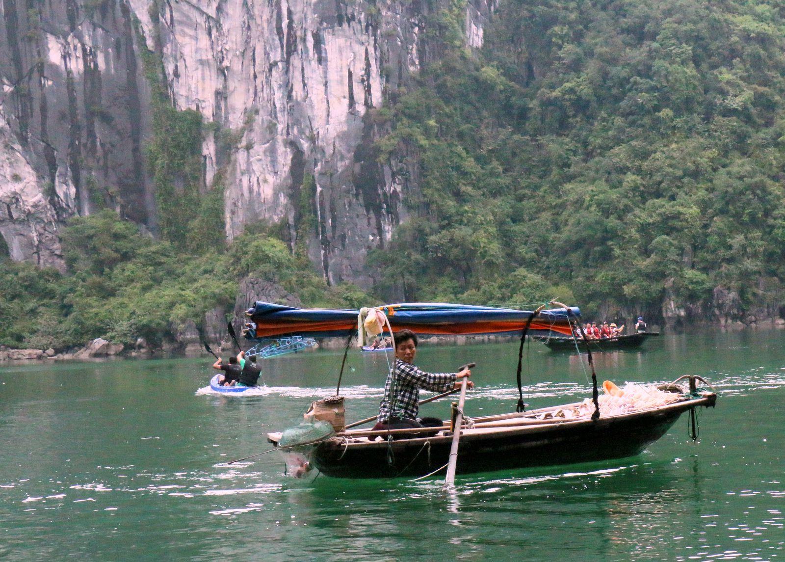L'ile aux singes, baie d'Halong au Vietnam