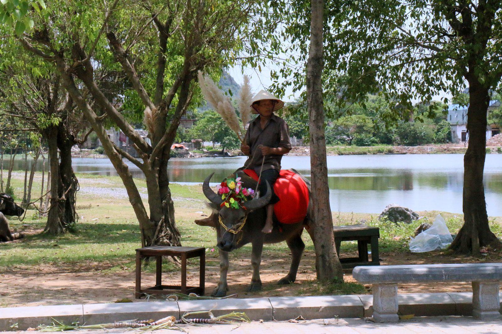 Aux alentours du temple du roi Dinh Tiên Hoang, Vietnam