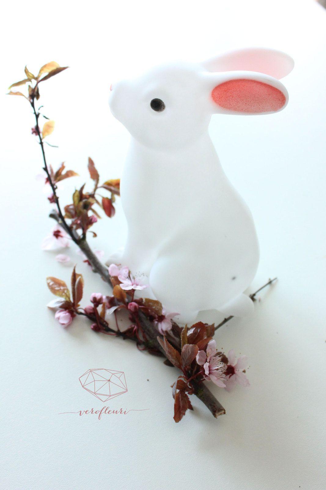 Lapin&amp&#x3B;cherry blossom