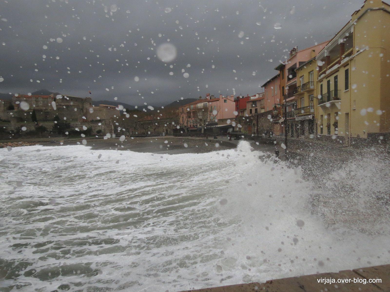 vagues à Collioure