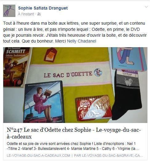 N°247 Le sac d'Odette chez Sophie