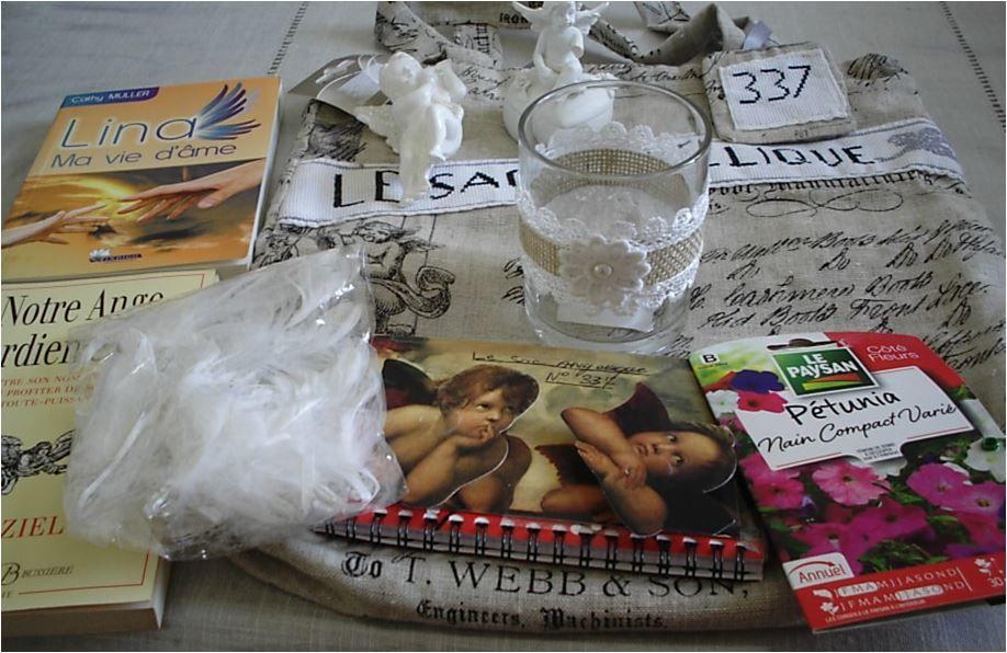N°337 Le sac angélique : retour chez Bry41