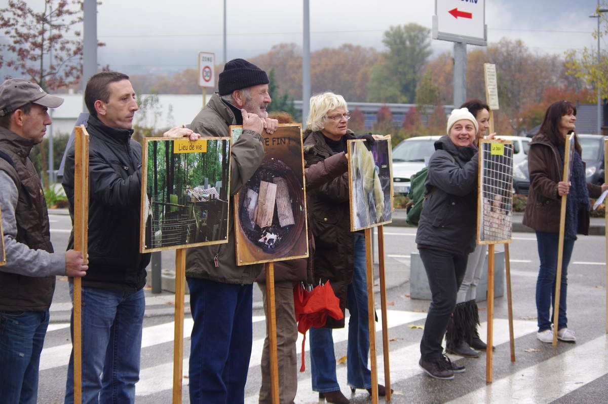 Manifestation contre le salon du chiot 15 et 16 novembre for Salon des chiots
