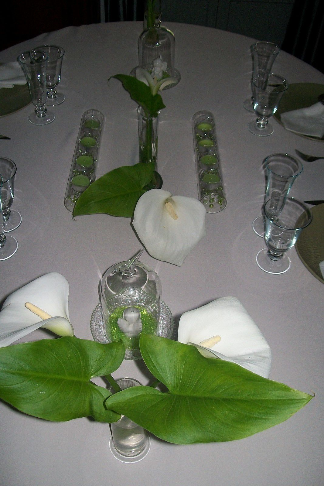 table arums
