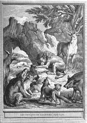 Les obsèques de la lionne