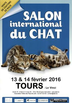 Le salon du chat Tours 2016