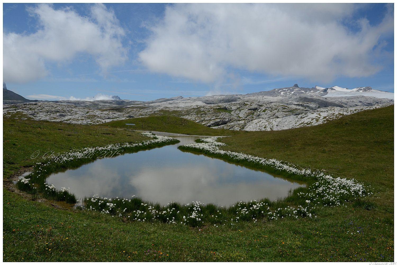 paysages montagnards