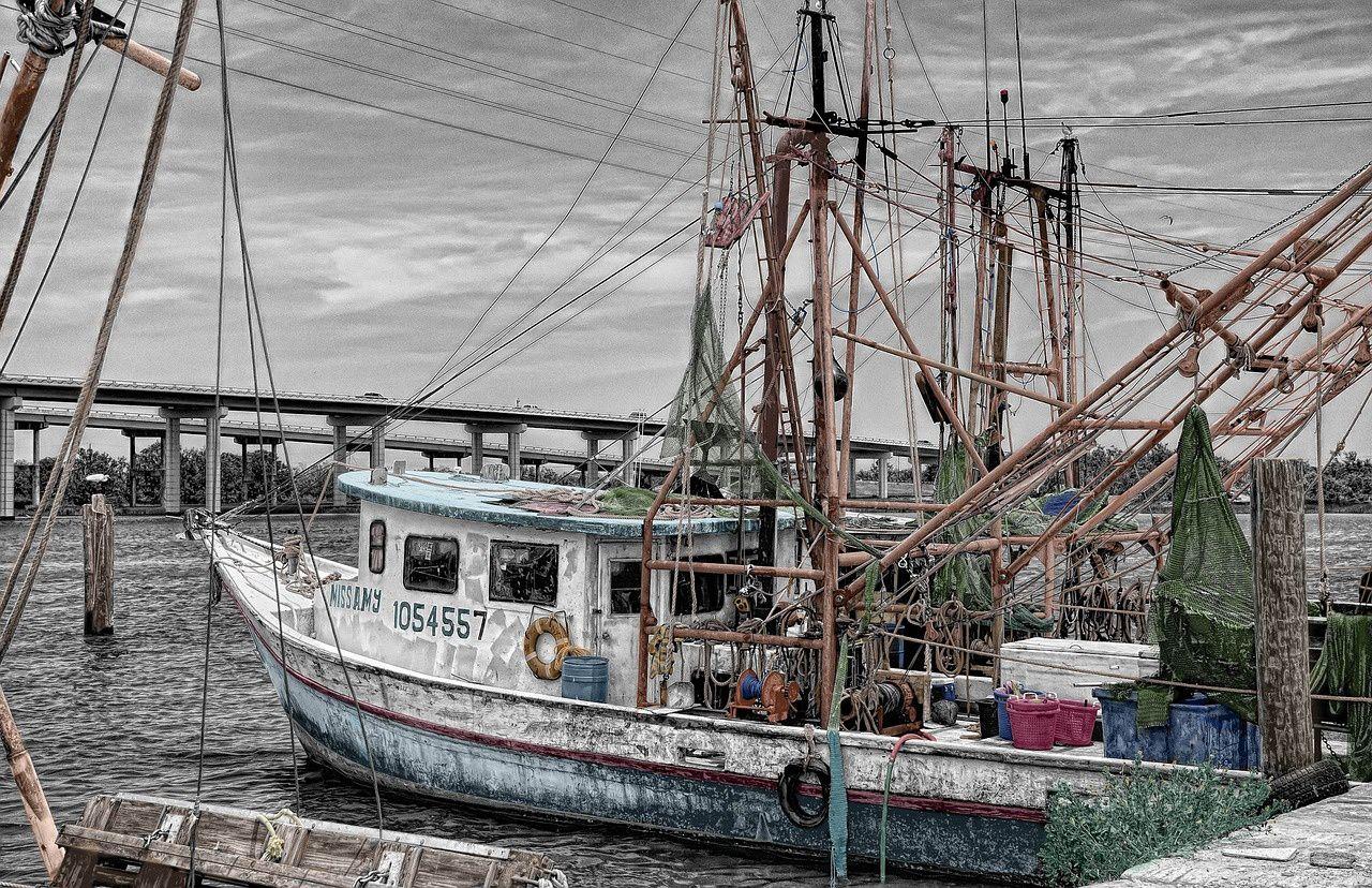 Pêche et aquaculture en France : la flotte.