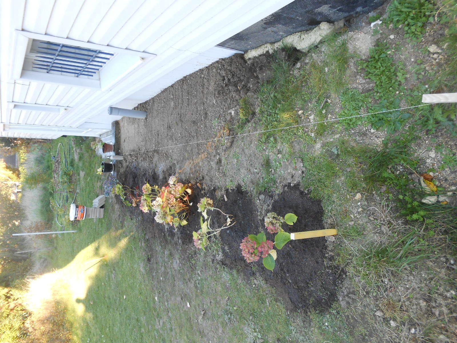Novembre rime avec jardin la maison aux 12 travaux - Jardin novembre ...