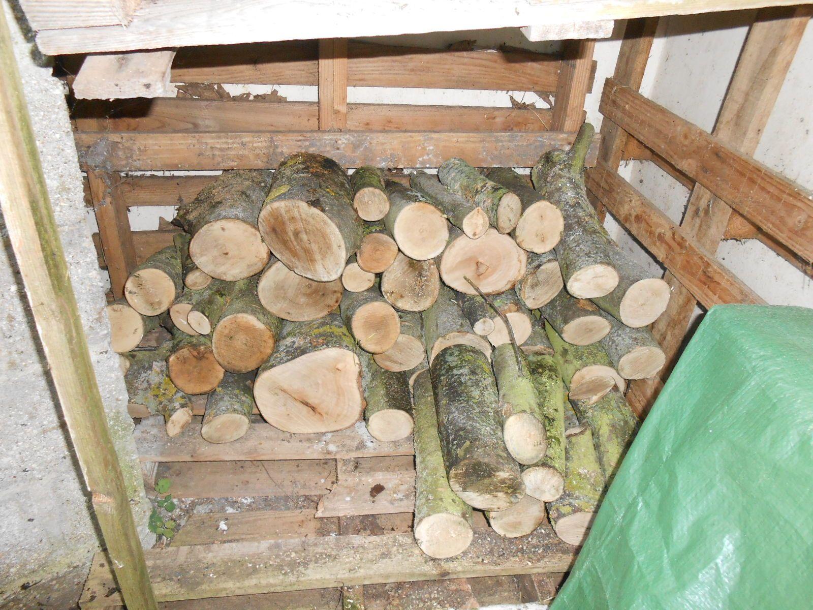 Du bois dans le jardin...